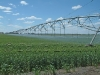 irrigation-pivot28