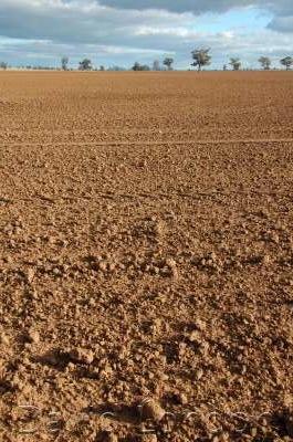 tilled-paddock-dirt45