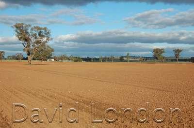 tilled-paddock-dirt47