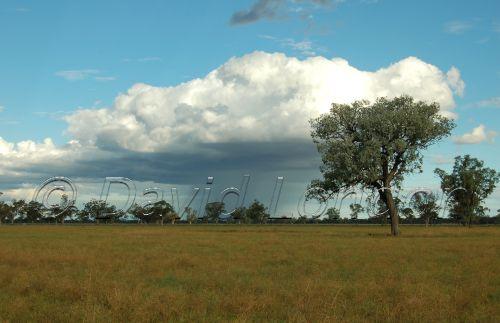 raincloud03