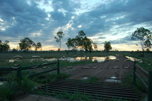 sunset cattle grid45