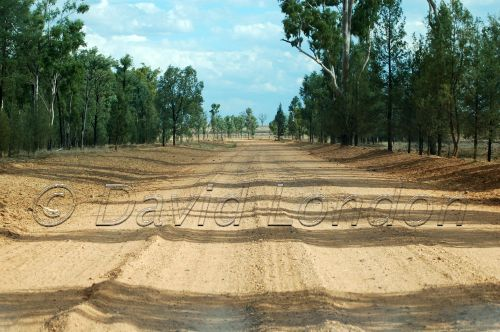 dirt-road1