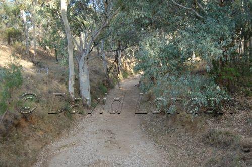 dry-creek06