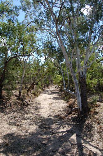 dry creek78