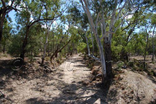 dry creek79