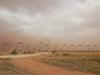 dust-storm208