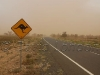 roo-sign-dust-storm02