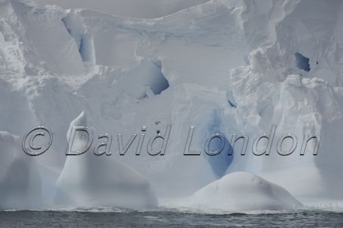 1st-iceberg21
