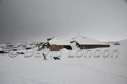 huts-snowfall-08