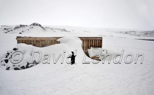 magnetograph hut snowfall03