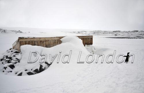 magnetograph hut snowfall04