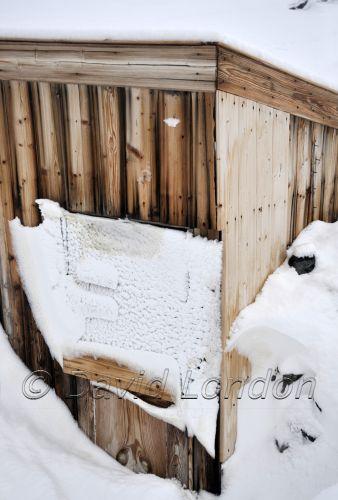 magnetograph-snowfall05