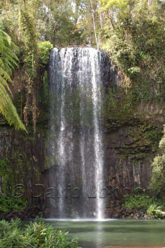 Millaa falls02