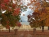 autumnwallabadah_68