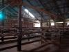 Kingston wool shed41