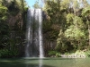 Millaa falls05