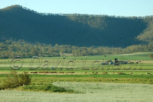 vista Darling Downs28