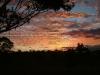 Casino-sunset07