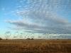 rural-sky88