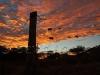 sunrise vineyard20
