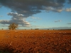 sunset dirt1