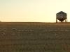 wheat-bin-sunset27