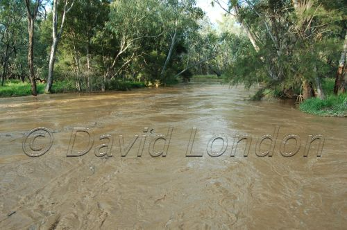 floods Qld31