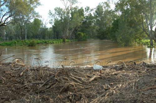 floods Qld35