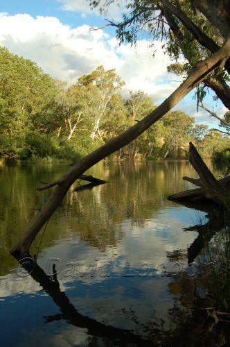 river Alexandra19