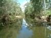 creek01