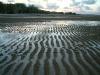 tide ripples75