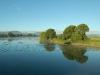 Tweed river43